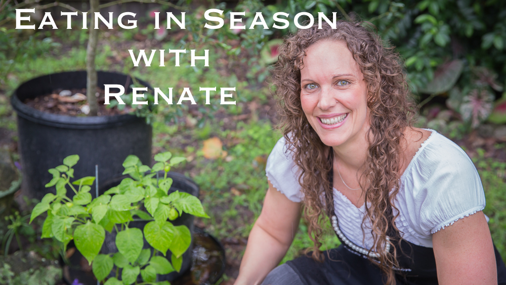 eating in season with Renate at Saporito